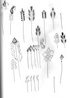 11_yftplantsketches.jpg